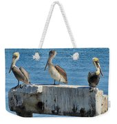 Three Pelicans Weekender Tote Bag