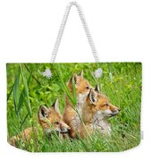 Three Red Fox Pups Weekender Tote Bag