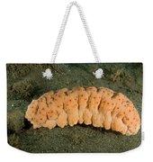 Three-rowed Sea Cucumber Weekender Tote Bag
