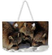 Three Sweet Raccoons Weekender Tote Bag
