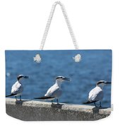 Three Turning Terns Weekender Tote Bag