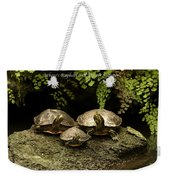 Three Turtles Weekender Tote Bag