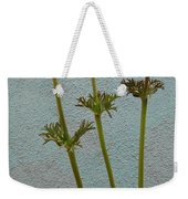 Three Wishes For The New Year Weekender Tote Bag