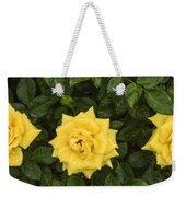 Three Yellow Roses In Rain Weekender Tote Bag