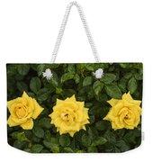 Three Yellow Roses Weekender Tote Bag