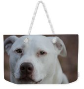 Through The Eyes Of A Pitbull II  Weekender Tote Bag