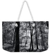 Through The Trees In Black And White Weekender Tote Bag