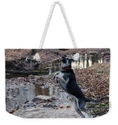 Throwing Stones Weekender Tote Bag