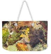 Tidal Pool Color Weekender Tote Bag by Debbie Green