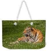 Tiger At Rest 3 Weekender Tote Bag