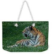 Tiger At Rest 4 Weekender Tote Bag