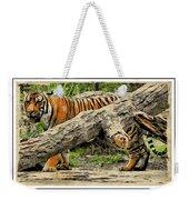 Tiger By The Log Weekender Tote Bag