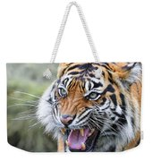 Tiger Growl Weekender Tote Bag
