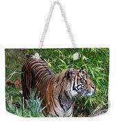 Tiger In The Vast Jungles Weekender Tote Bag