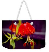 Tiger Lilly In Repose Weekender Tote Bag