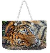 Tiger Nap Time Weekender Tote Bag
