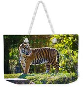 Tiger On The Prowl Weekender Tote Bag
