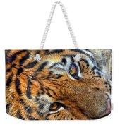 Tiger Peepers Weekender Tote Bag