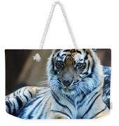 Tiger Posing Weekender Tote Bag
