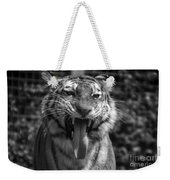 Tiger Say Aw Weekender Tote Bag