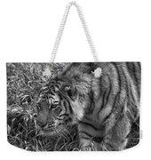 Tiger Stalking In Black And White Weekender Tote Bag