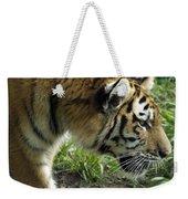 Tiger Stalking Weekender Tote Bag