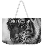 Tiger Stare In Black And White Weekender Tote Bag