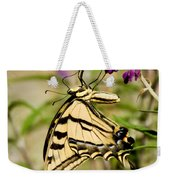 Tiger Swallowtail Butterfly Feeding Weekender Tote Bag