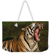 Tiger Teeth Weekender Tote Bag