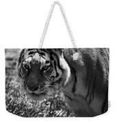 Tiger With A Cold Stare Weekender Tote Bag