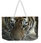 Tiger You Looking At Me Weekender Tote Bag