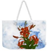 Tigers In The Clouds 8567 Weekender Tote Bag