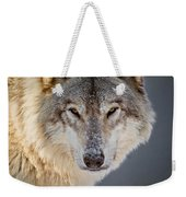 Timber Wolf Christmas Card French 21 Weekender Tote Bag