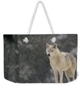 Timber Wolf Female North America Weekender Tote Bag