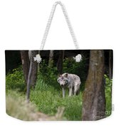 Timber Wolf In Forest Weekender Tote Bag