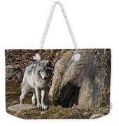 Timber Wolf In Pond Weekender Tote Bag