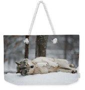 Timber Wolf In Winter Weekender Tote Bag
