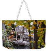 Timber Wolf On Rock Weekender Tote Bag