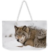 Timber Wolf Pictures 1028 Weekender Tote Bag