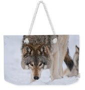 Timber Wolf Pictures 1042 Weekender Tote Bag