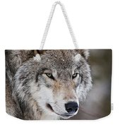 Timber Wolf Pictures 1067 Weekender Tote Bag