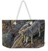 Timber Wolf Pictures 1094 Weekender Tote Bag