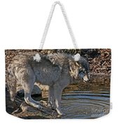 Timber Wolf Pictures 1101 Weekender Tote Bag