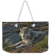 Timber Wolf Pictures 1148 Weekender Tote Bag