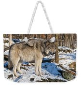Timber Wolf Pictures 1175 Weekender Tote Bag