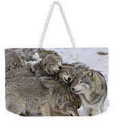 Timber Wolf Pictures 120 Weekender Tote Bag