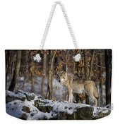 Timber Wolf Pictures 1206 Weekender Tote Bag