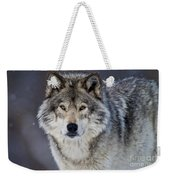 Timber Wolf Pictures 1271 Weekender Tote Bag