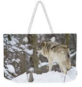 Timber Wolf Pictures 1306 Weekender Tote Bag