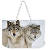 Timber Wolf Pictures 1312 Weekender Tote Bag